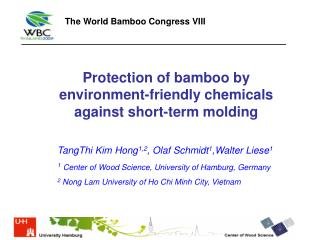 Protection of bamboo by environment-friendly chemicals against short-term molding