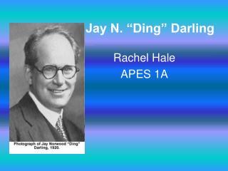 """Jay N. """"Ding"""" Darling"""