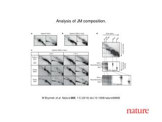 M Bzymek  et al. Nature 000 , 1-5 (2010) doi:10.1038/nature08868