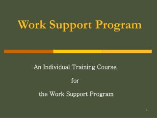 Work Support Program