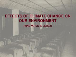 EFFECTS OF CLIMATE CHANGE ON OUR ENVIRONMENT (VINEYARDS IN JEREZ)