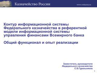 Заместитель руководителя Федерального казначейства С.Б.Гуральников