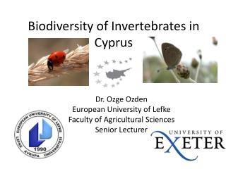 Biodiversity of Invertebrates in Cyprus