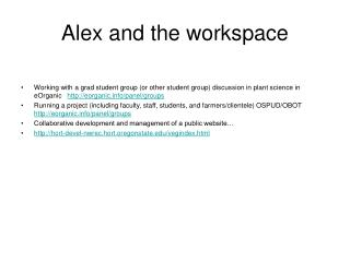 Alex and the workspace