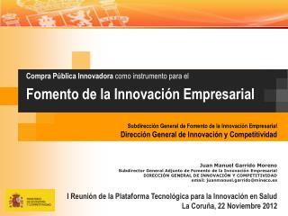Juan  Manuel Garrido Moreno Subdirector General Adjunto de Fomento de la Innovación Empresarial