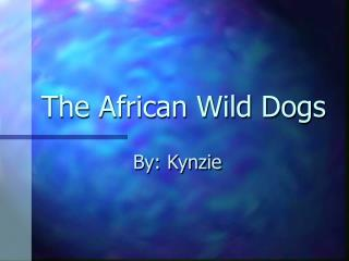 The African Wild Dogs