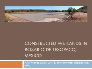 Constructed Wetlands in  RosARIO  DE TESOPACO,  mEXICO