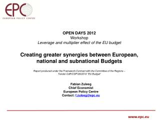 OPEN DAYS 2012  Workshop Leverage and multiplier effect of the EU budget