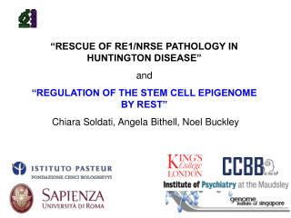 """RESCUE OF RE1/NRSE PATHOLOGY IN HUNTINGTON DISEASE""  and"