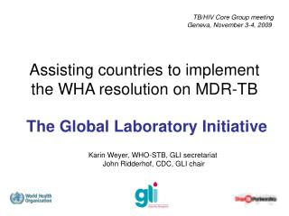 Assisting countries to implement the WHA resolution on MDR-TB