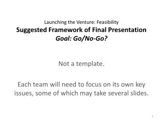 Launching the Venture: Feasibility Suggested Framework of Final Presentation Goal: Go/No-Go?