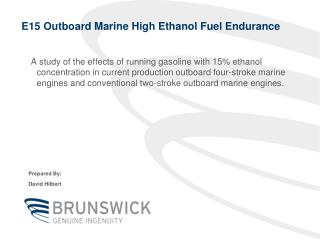 E15 Outboard Marine High Ethanol Fuel Endurance