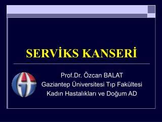 SERVİKS KANSERİ