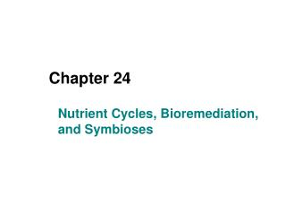 Nutrient Cycles, Bioremediation, and Symbioses