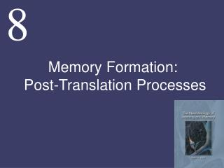 Memory Formation:  Post-Translation Processes