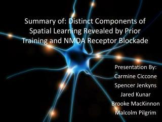 Presentation By: Carmine Ciccone Spencer Jenkyns Jared Kunar Brooke MacKinnon Malcolm Pilgrim