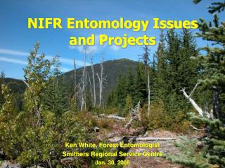 NIFR Entomology Issues and Projects