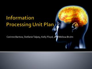 Information Processing Unit Plan