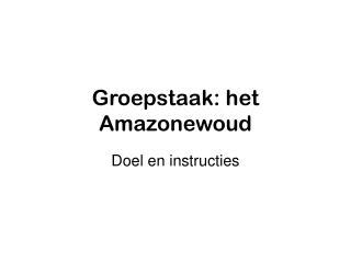 Groepstaak: het Amazonewoud