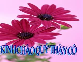 K�NH CH�O QU� TH?Y C�