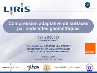Compression adaptative de surfaces par ondelettes géométriques