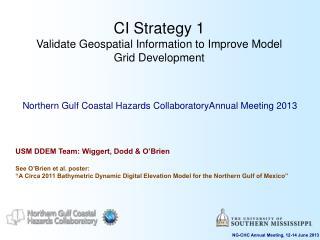 CI Strategy 1 Validate Geospatial Information to Improve Model Grid Development
