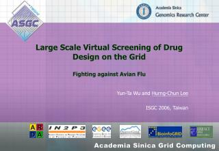 Large Scale Virtual Screening of Drug Design on the Grid Fighting against Avian Flu