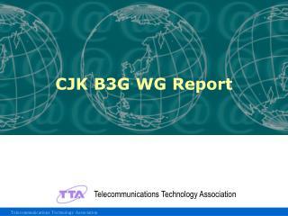 CJK B3G WG Report