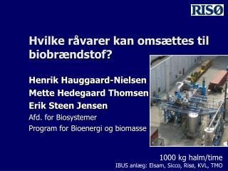 Hvilke råvarer kan omsættes til  biobrændstof?