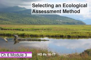 Selecting an Ecological Assessment Method