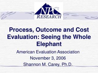 Process, Outcome and Cost Evaluation: Seeing the Whole Elephant