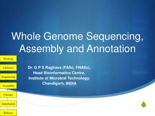 Whole Genome Sequencing, Assembly and Annotation