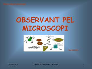 OBSERVANT PEL MICROSCOPI
