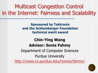 Chin-Ying Wang Advisor: Sonia Fahmy Department of Computer Sciences Purdue University