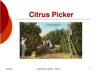 Citrus Picker