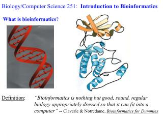 Biology/Computer Science 251:   Introduction to Bioinformatics