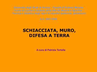 SCHIACCIATA, MURO, DIFESA A TERRA