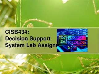 CISB434:  Decision Support  System Lab Assignment