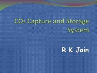 CO 2  Capture and Storage System
