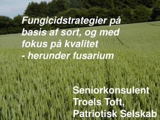 Fungicidstrategier på basis af sort, og med fokus på kvalitet  - herunder fusarium
