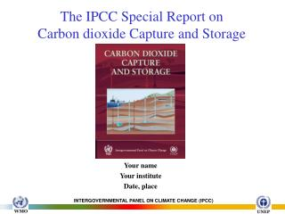 The IPCC Special Report on  Carbon dioxide Capture and Storage