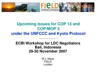 Upcoming Issues for COP 13 and COP/MOP 3 under the UNFCCC and Kyoto Protocol ______________