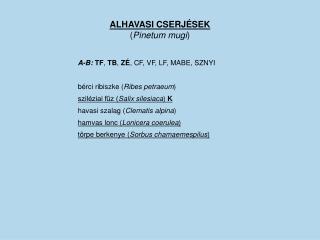 ALHAVASI CSERJÉSEK ( Pinetum mugi )