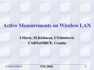 Active Measurements on Wireless LAN
