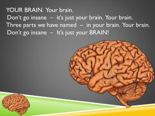 YOUR BRAIN.  Your brain.   Don't go insane  –  it's just your brain.  Your brain.