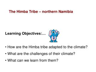 Learning Objectives:    How are the Himba tribe adapted to the climate  What are the challenges of their climate  What c