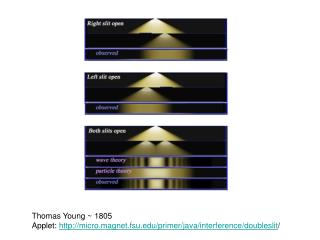 Thomas Young ~ 1805 Applet:  micro.magnet.fsu/primer/java/interference/doubleslit /