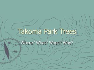 Takoma Park Trees
