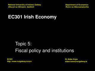 EC301 Irish Economy
