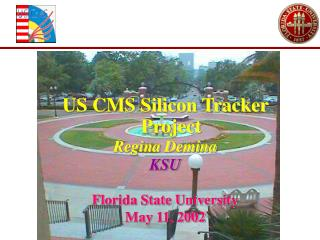 US CMS Silicon Tracker Project Regina Demina KSU Florida State University May 11, 2002